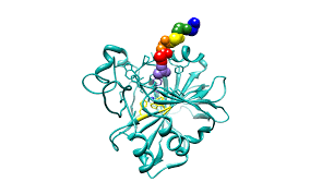 ProA Ligand.png